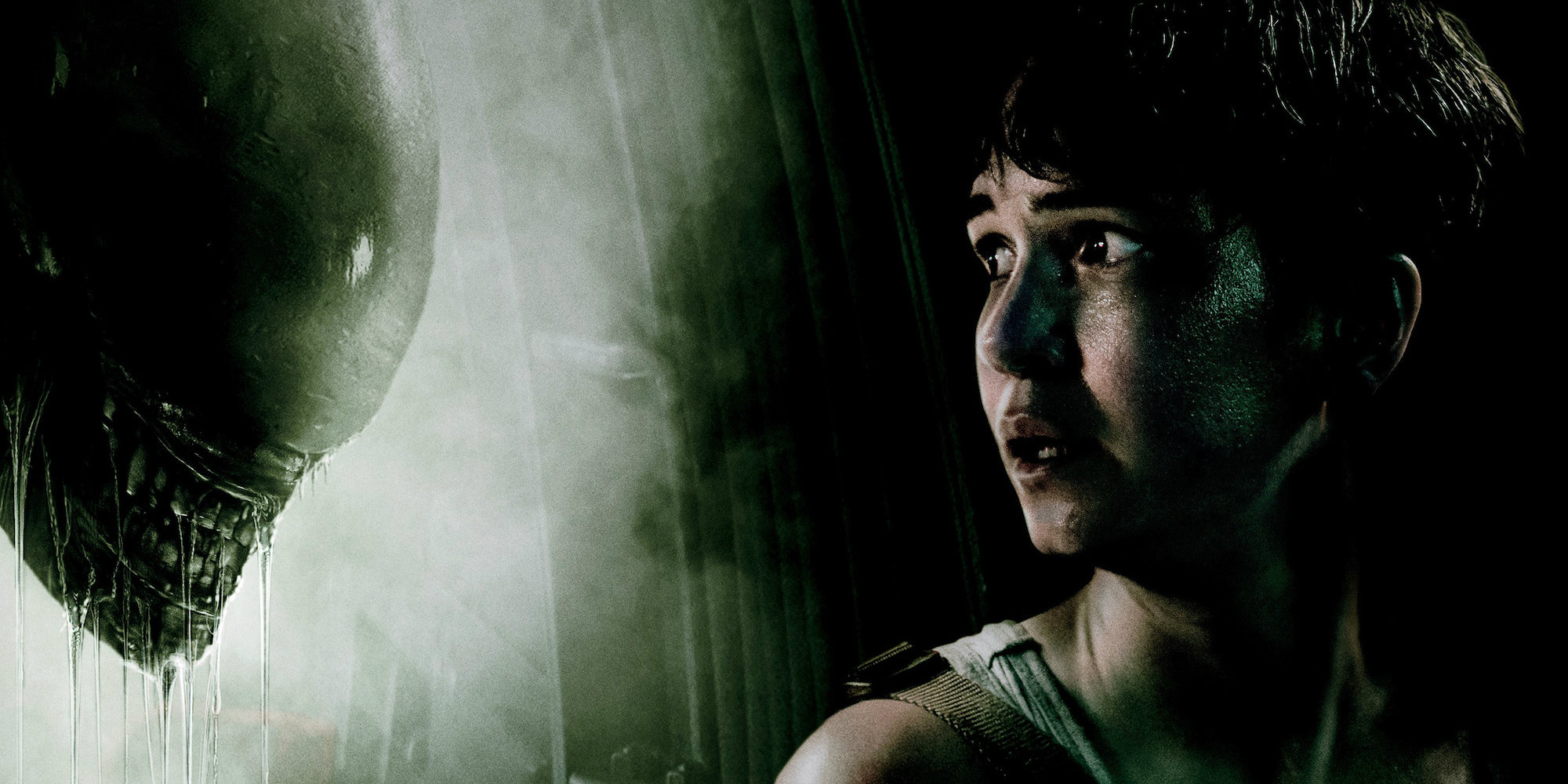 Alien: Covenant: Katherine Waterston ribadisce di essere all'oscuro di un sequel
