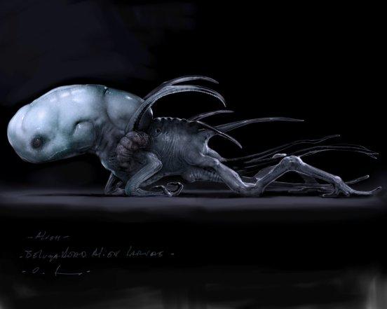Beluga+head+larvae2cflt