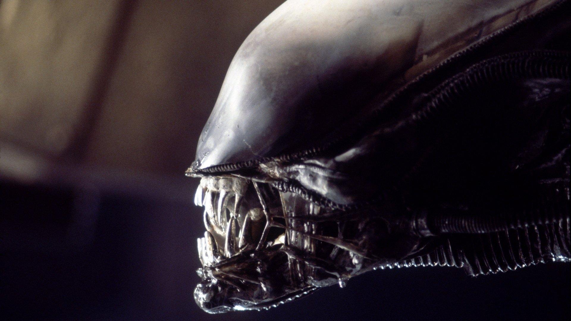 Noah Hawley parla della sua idea per la mai realizzata miniserie TV di Alien
